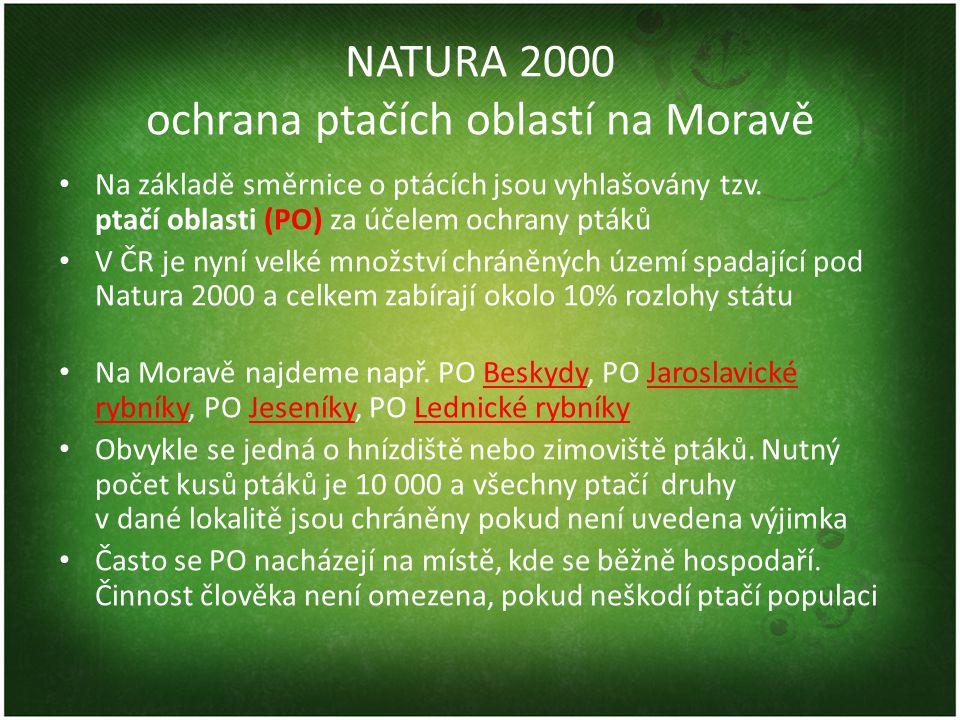 NATURA 2000 ochrana ptačích oblastí na Moravě