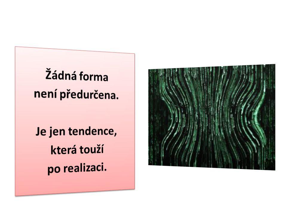 Žádná forma není předurčena. Je jen tendence, která touží po realizaci.