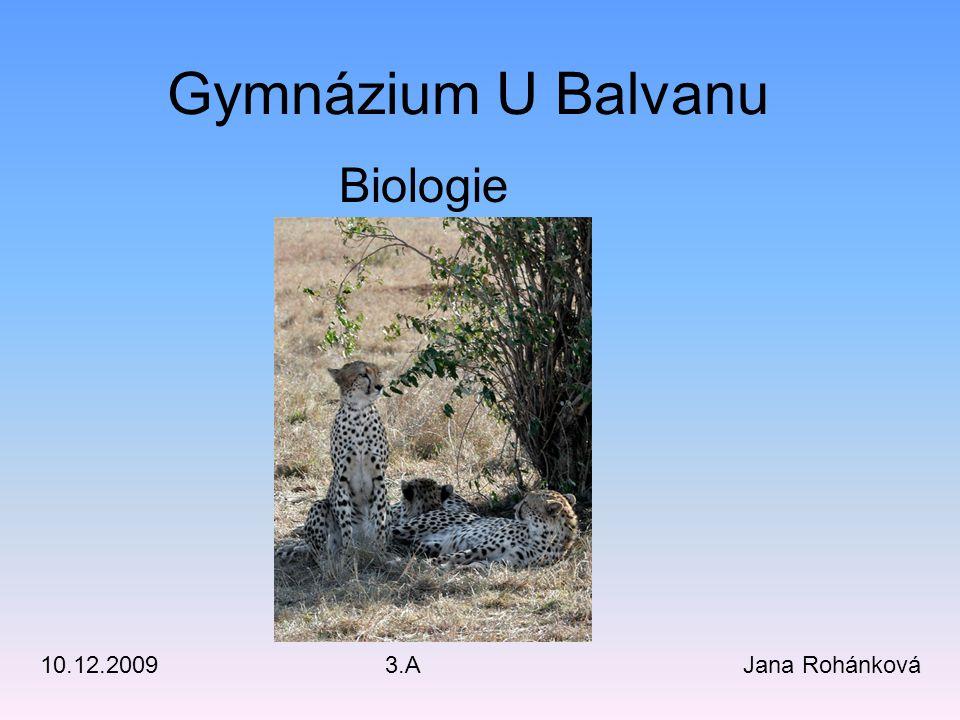 Gymnázium U Balvanu Biologie Jana Rohánková 10.12.2009 3.A