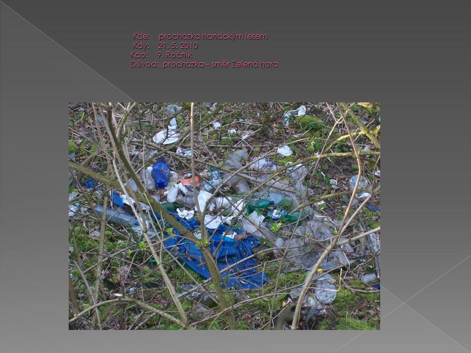 Kde: procházka hanáckým lesem Kdy: 21. 5. 2010 Kdo: 9