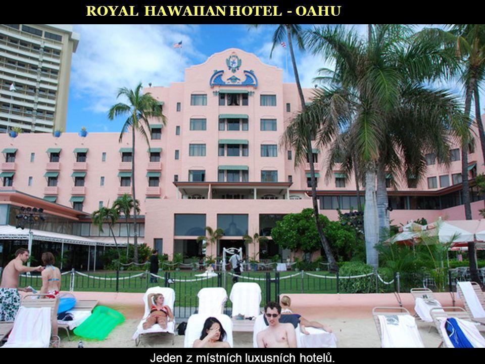 Jeden z místních luxusních hotelů.