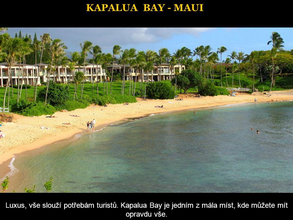 KAPALUA BAY - MAUI Luxus, vše slouží potřebám turistů.