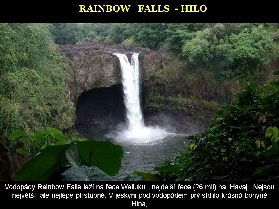RAINBOW FALLS - HILO