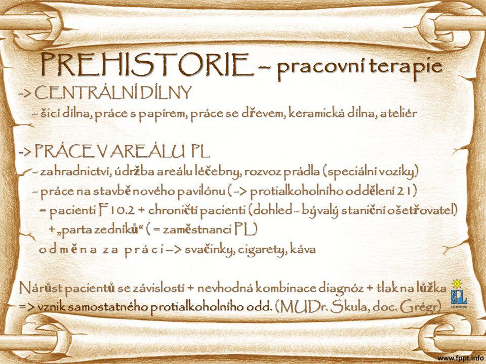PREHISTORIE – pracovní terapie