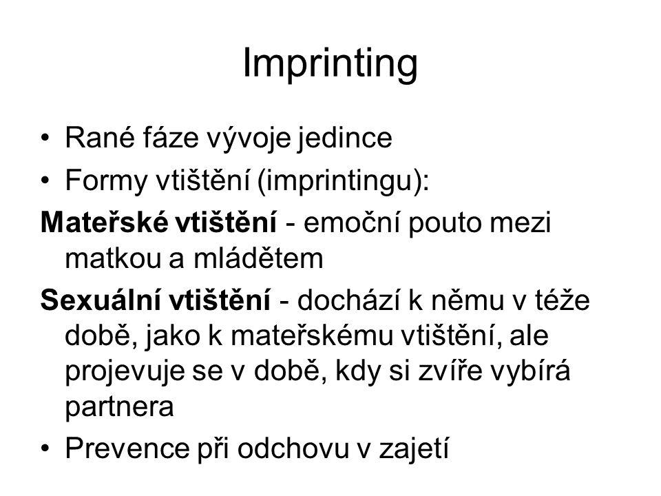 Imprinting Rané fáze vývoje jedince Formy vtištění (imprintingu):