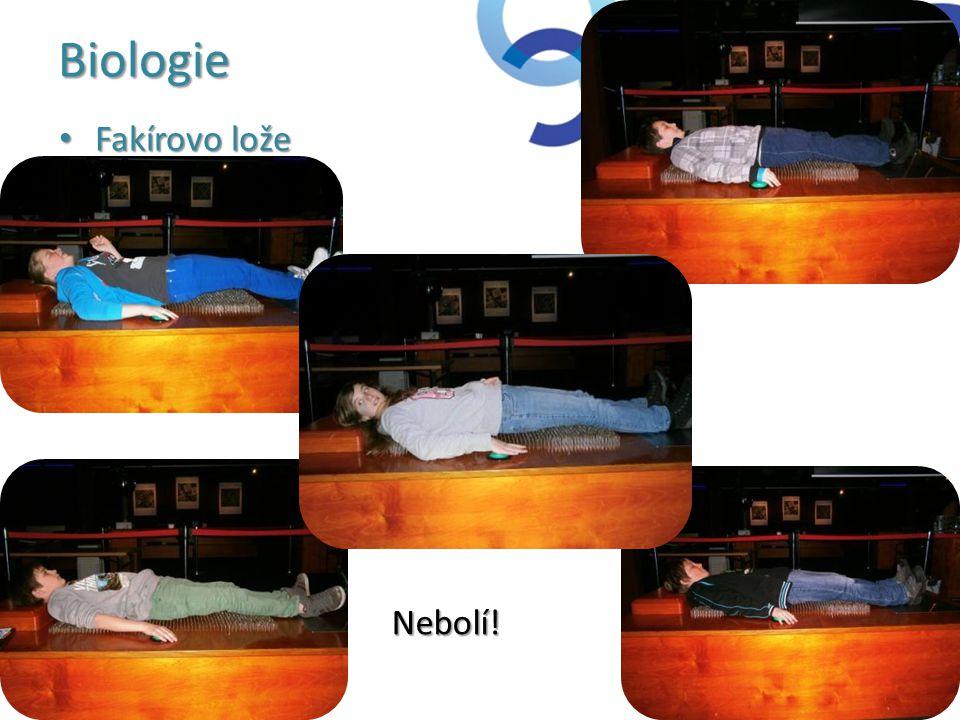 Biologie Fakírovo lože Nebolí!