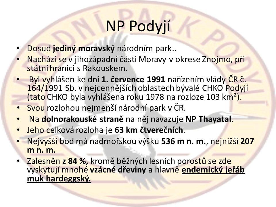 NP Podyjí Dosud jediný moravský národním park..