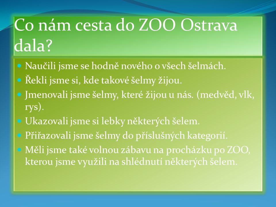 Co nám cesta do ZOO Ostrava dala