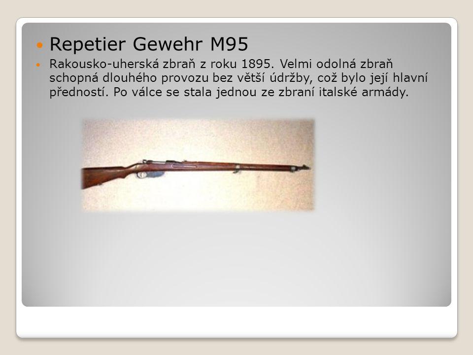 Repetier Gewehr M95
