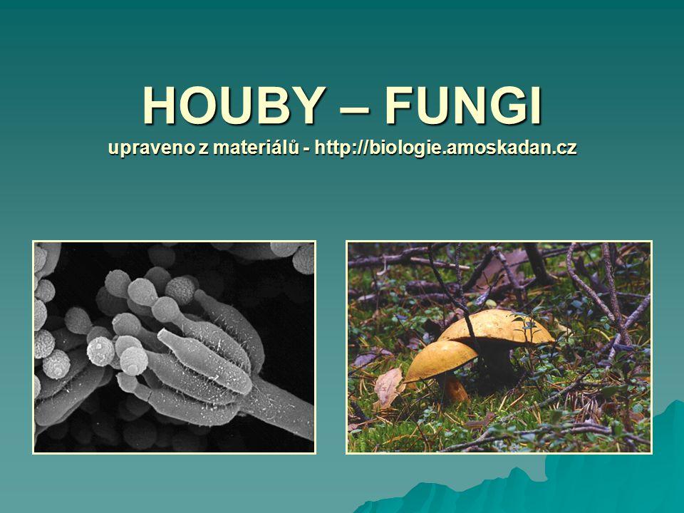HOUBY – FUNGI upraveno z materiálů - http://biologie.amoskadan.cz
