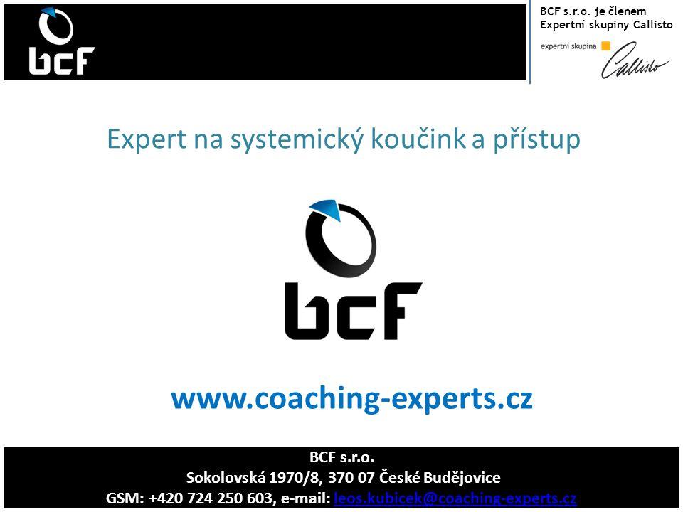 www.coaching-experts.cz Expert na systemický koučink a přístup