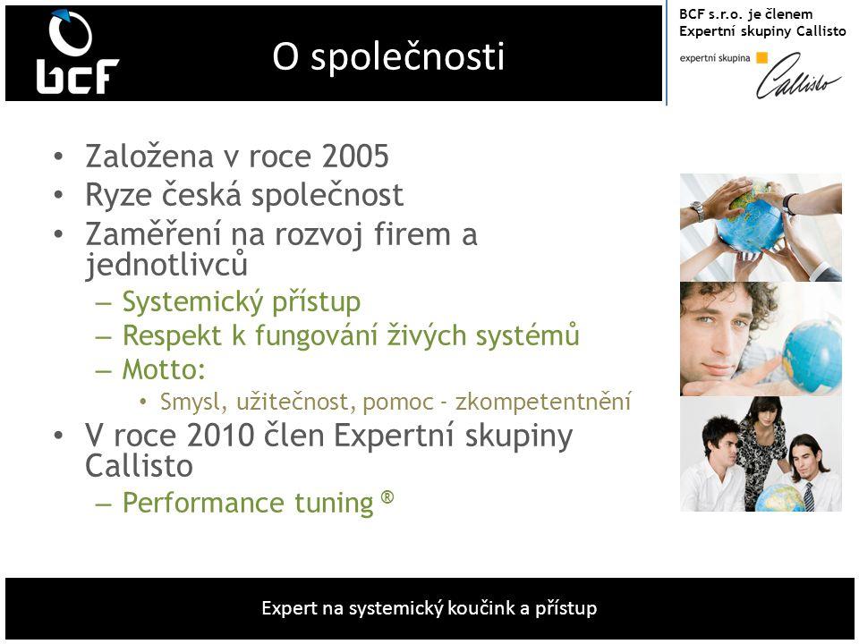O společnosti Založena v roce 2005 Ryze česká společnost