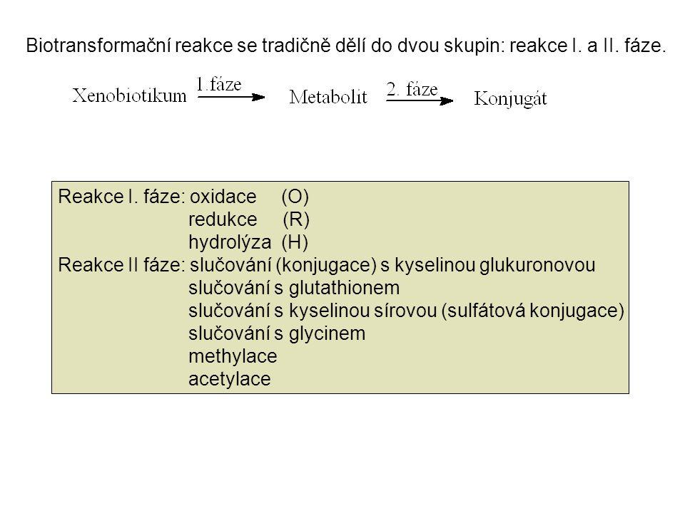 Biotransformační reakce se tradičně dělí do dvou skupin: reakce I. a II. fáze.