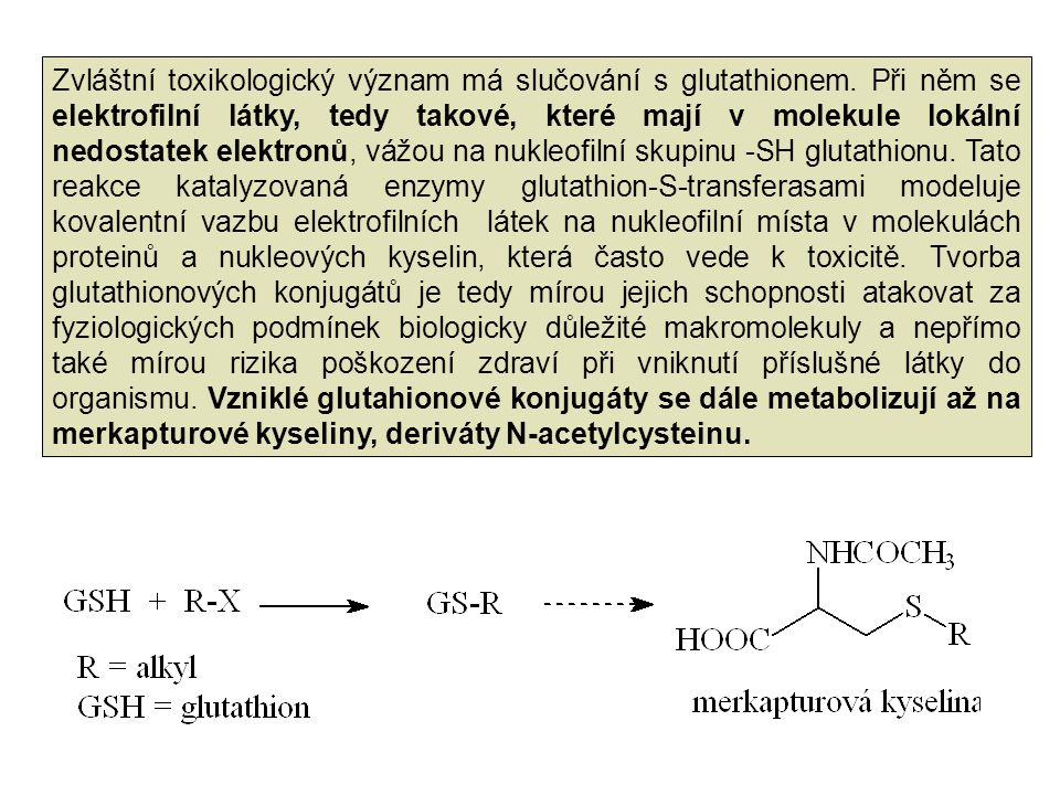 Zvláštní toxikologický význam má slučování s glutathionem