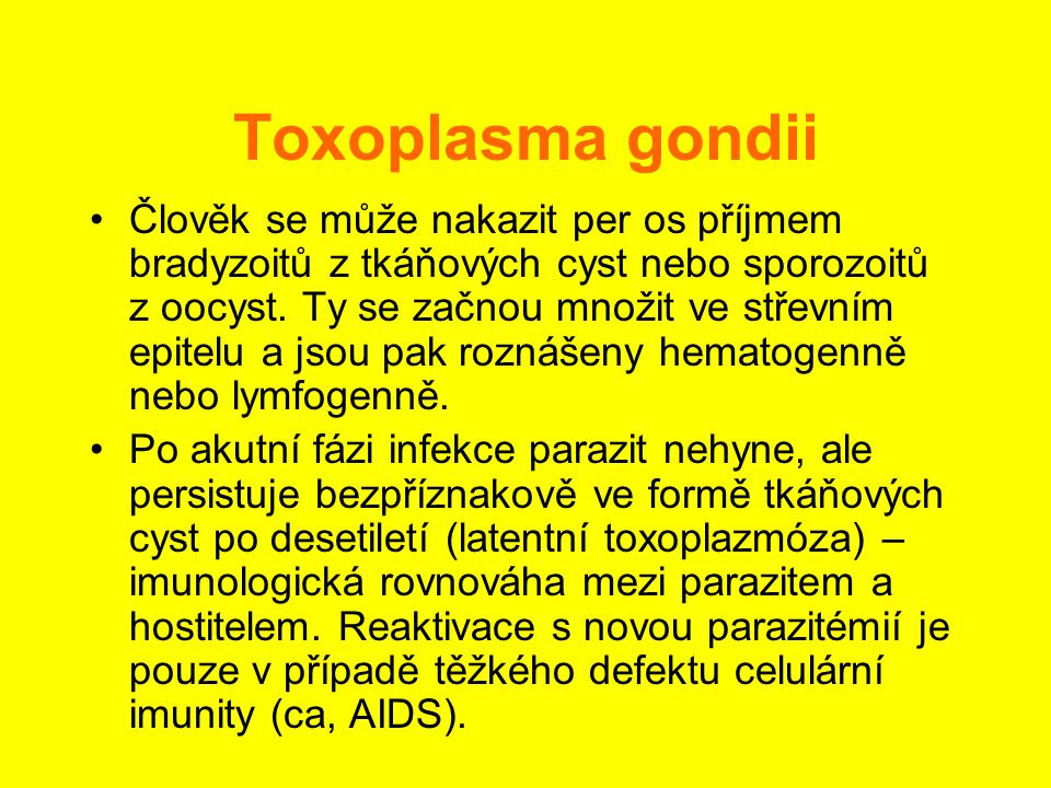 Toxoplasma gondii