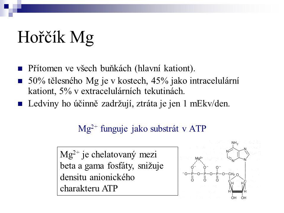 Mg2+ funguje jako substrát v ATP