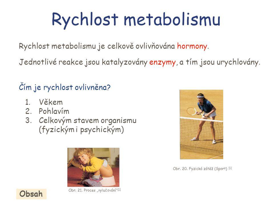 Rychlost metabolismu Rychlost metabolismu je celkově ovlivňována hormony. Jednotlivé reakce jsou katalyzovány enzymy, a tím jsou urychlovány.