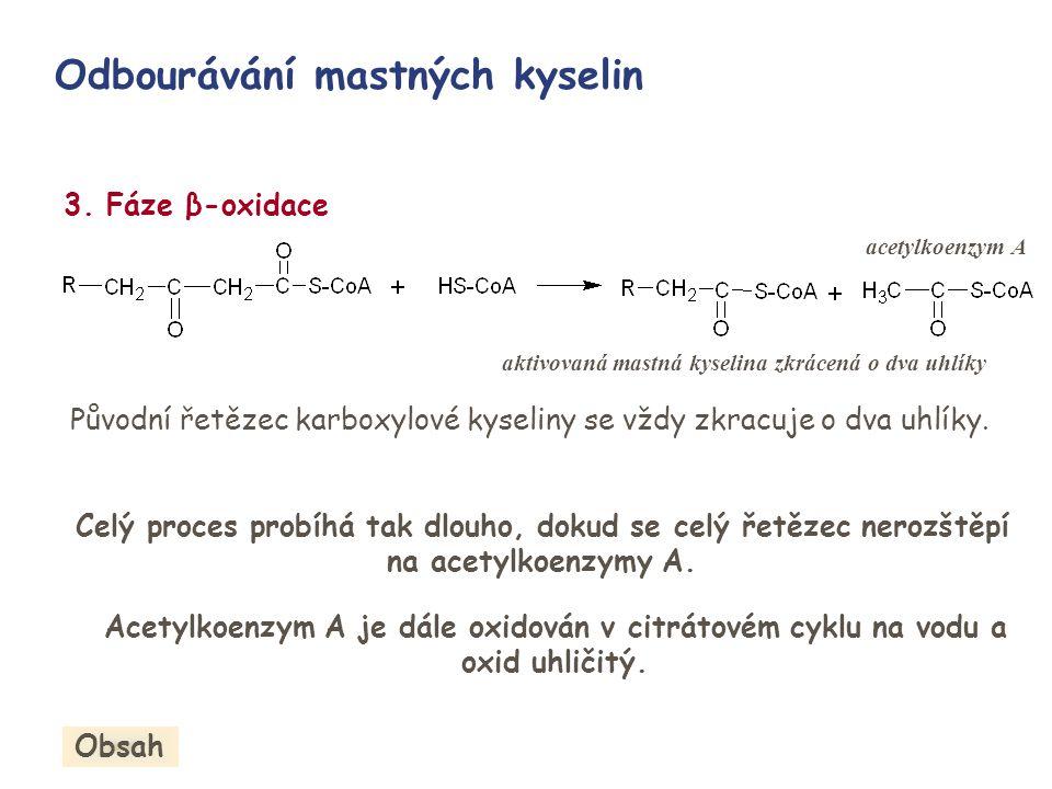 Odbourávání mastných kyselin