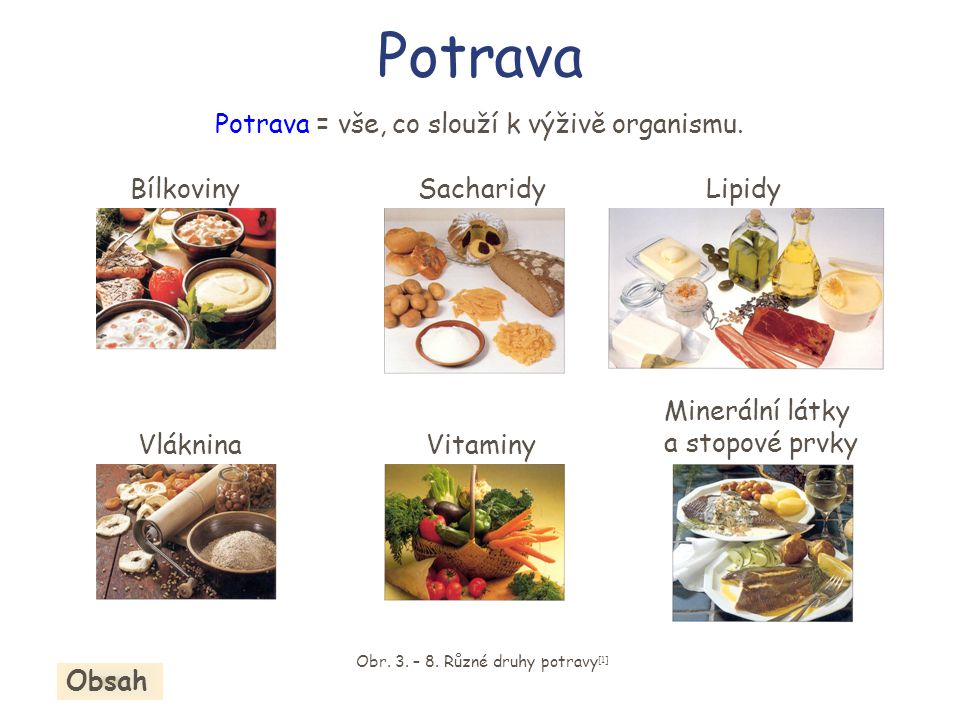 Potrava Potrava = vše, co slouží k výživě organismu. Bílkoviny
