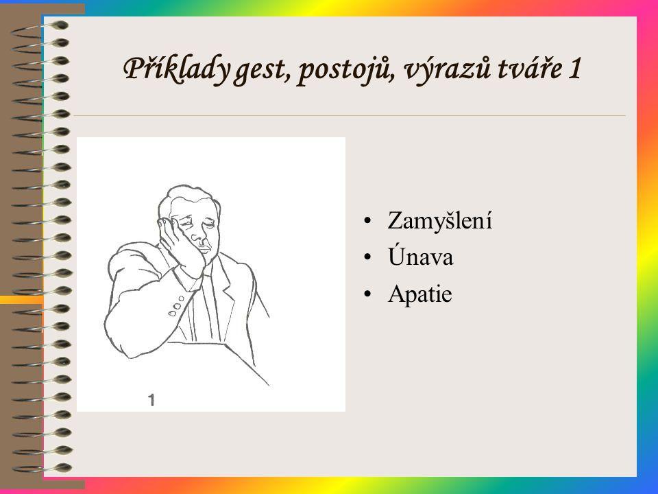 Příklady gest, postojů, výrazů tváře 1