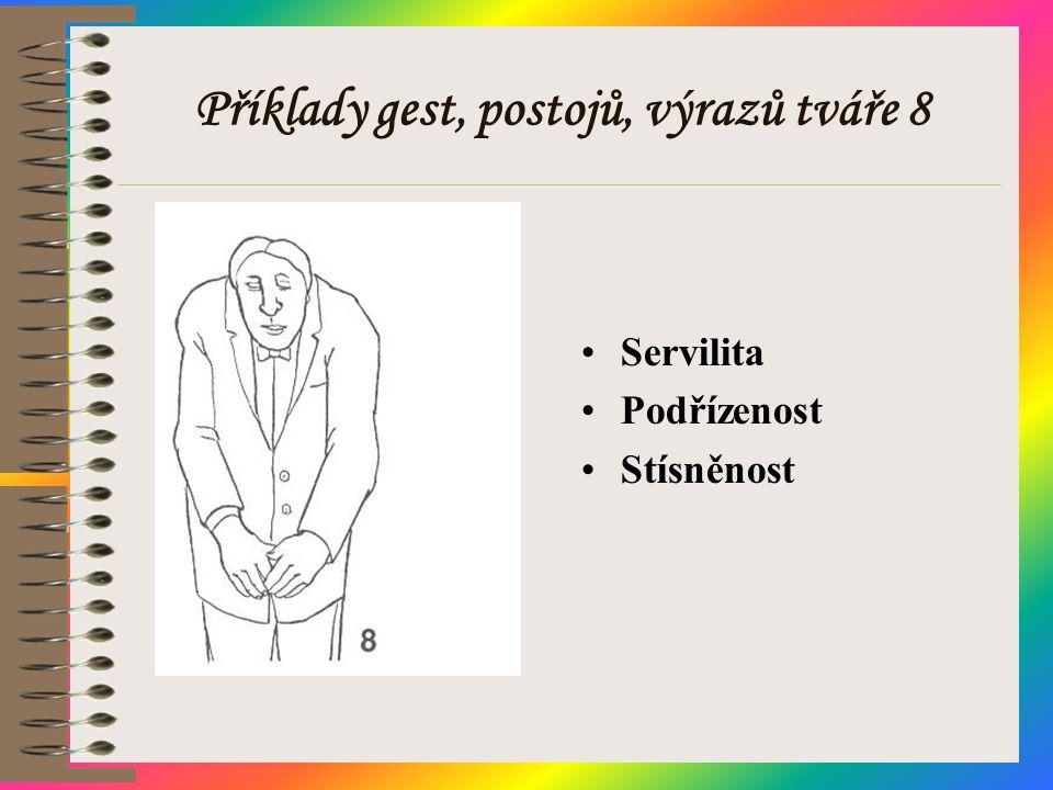 Příklady gest, postojů, výrazů tváře 8