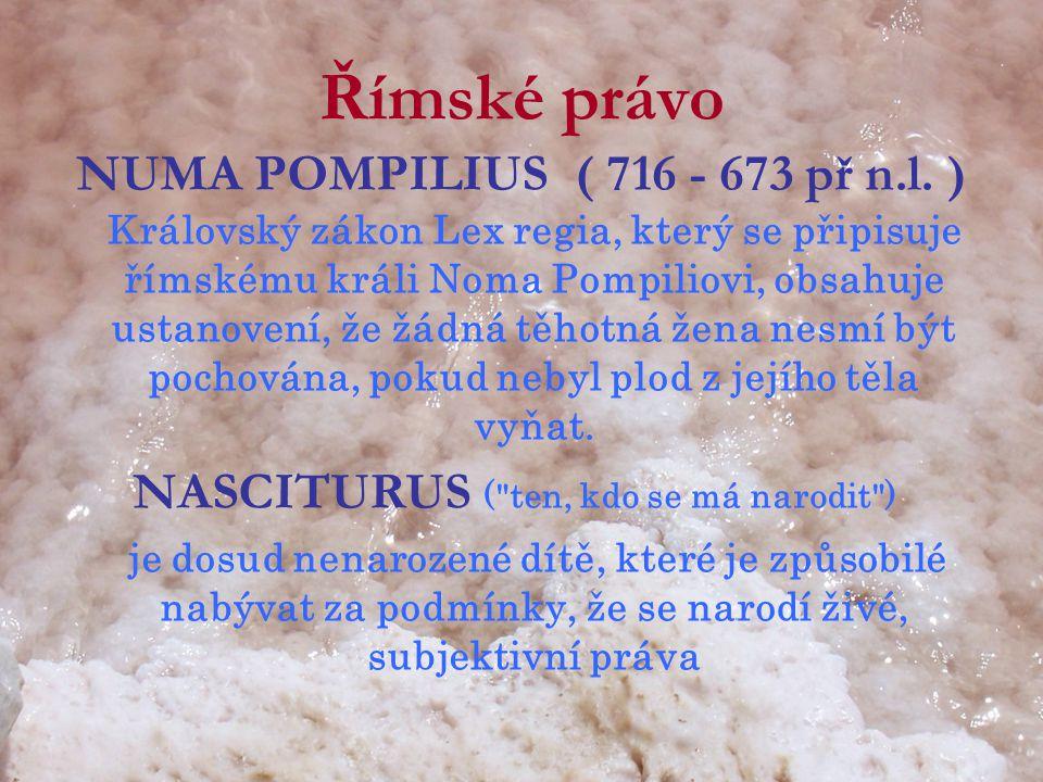NASCITURUS ( ten, kdo se má narodit )