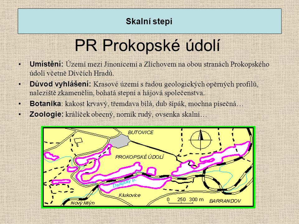 PR Prokopské údolí Skalní stepi