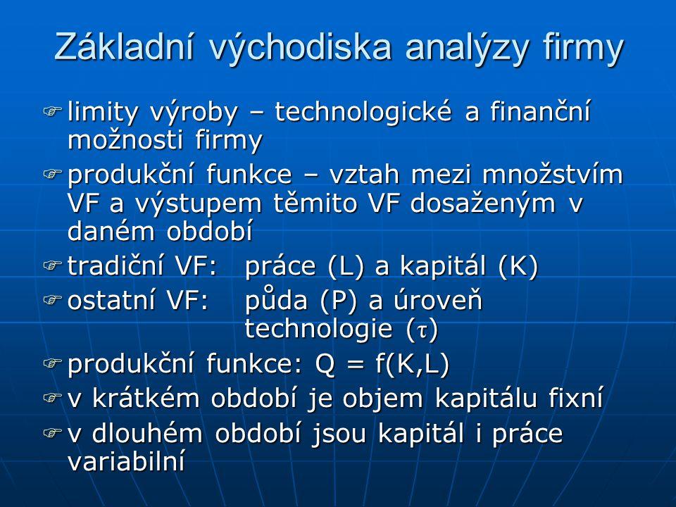 Základní východiska analýzy firmy