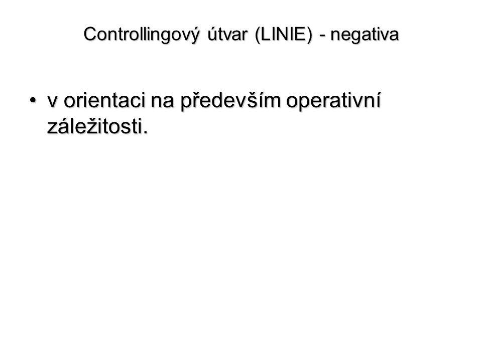 Controllingový útvar (LINIE) - negativa