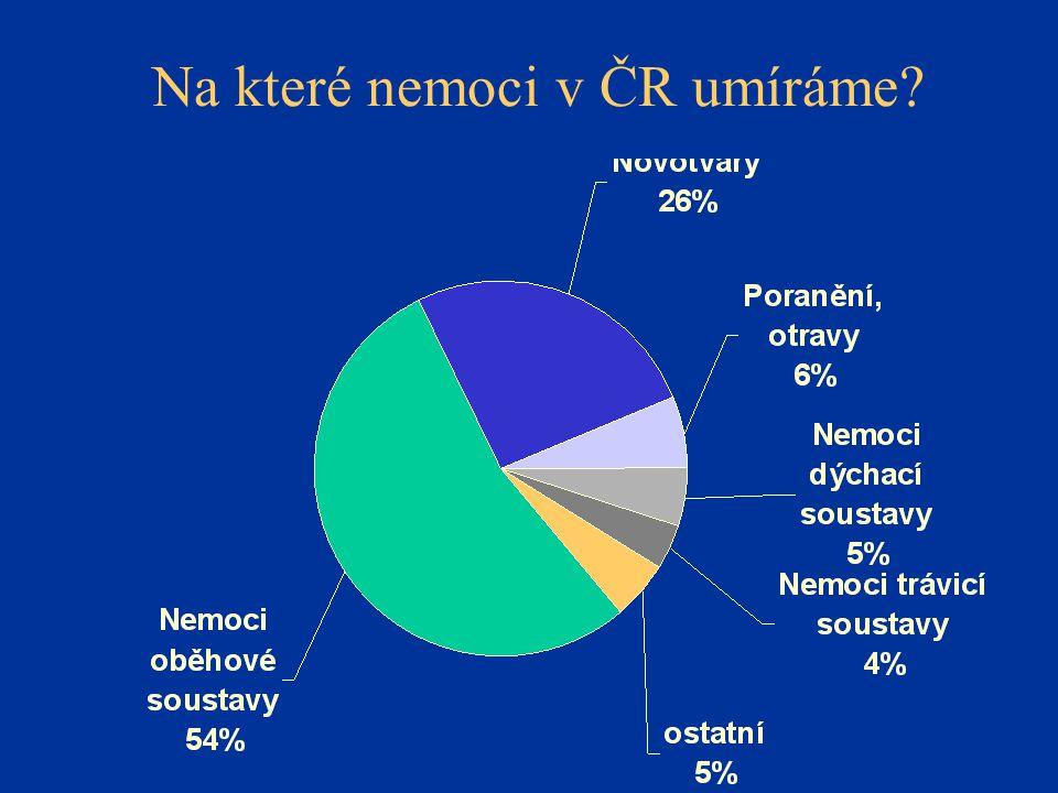 Na které nemoci v ČR umíráme