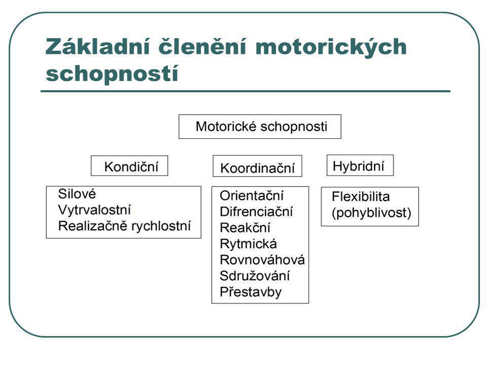 Základní členění motorických schopností
