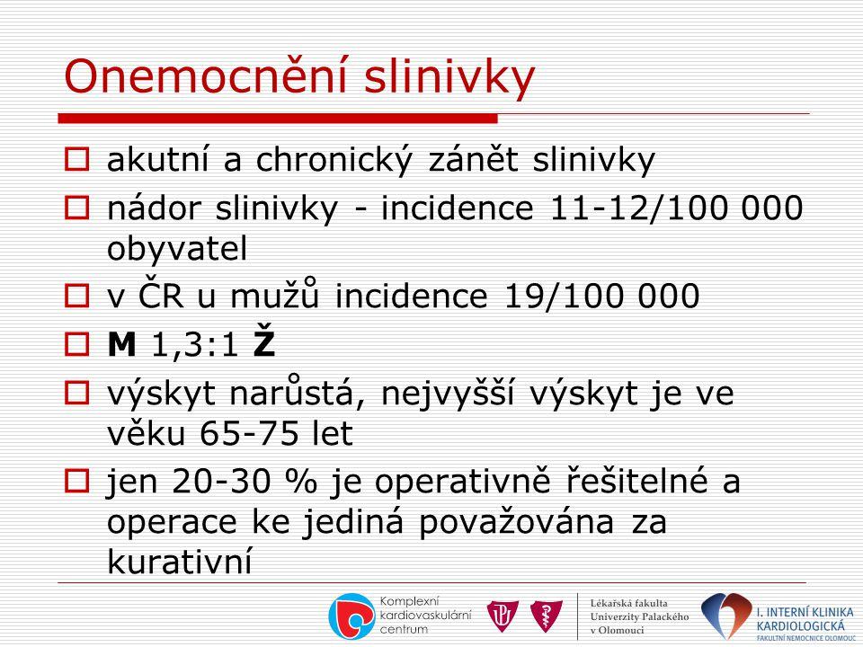Onemocnění slinivky akutní a chronický zánět slinivky