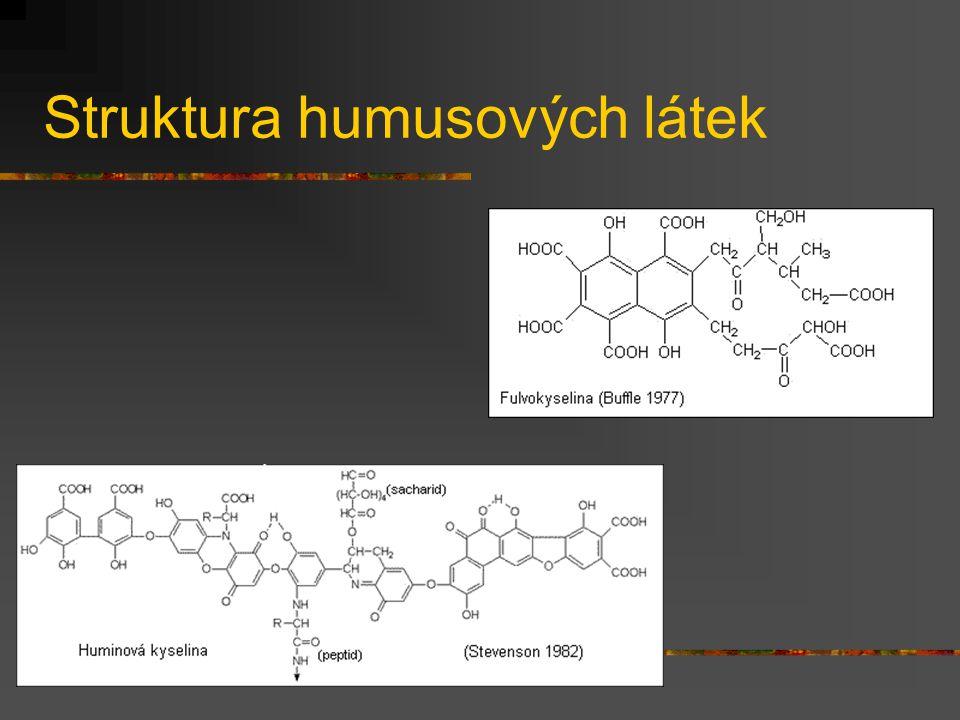 Struktura humusových látek