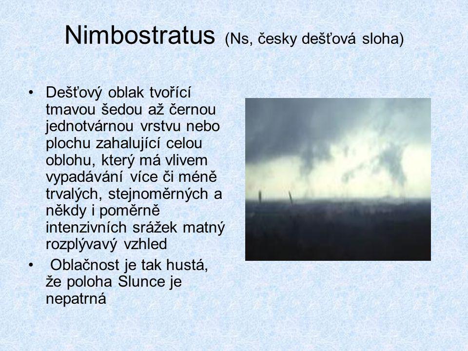 Nimbostratus (Ns, česky dešťová sloha)