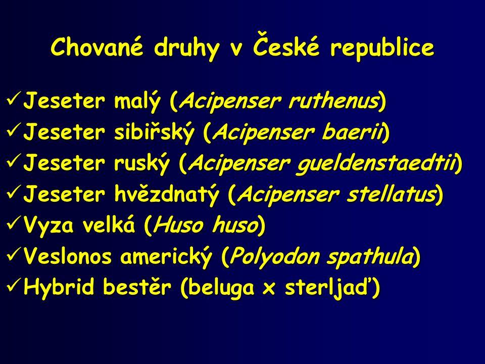 Chované druhy v České republice