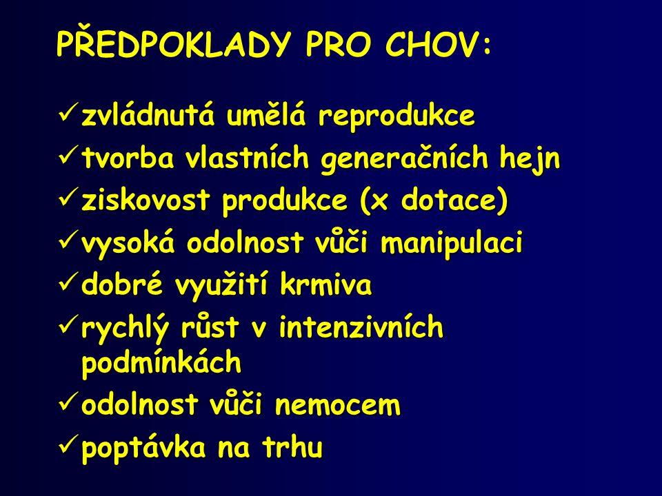 PŘEDPOKLADY PRO CHOV: zvládnutá umělá reprodukce