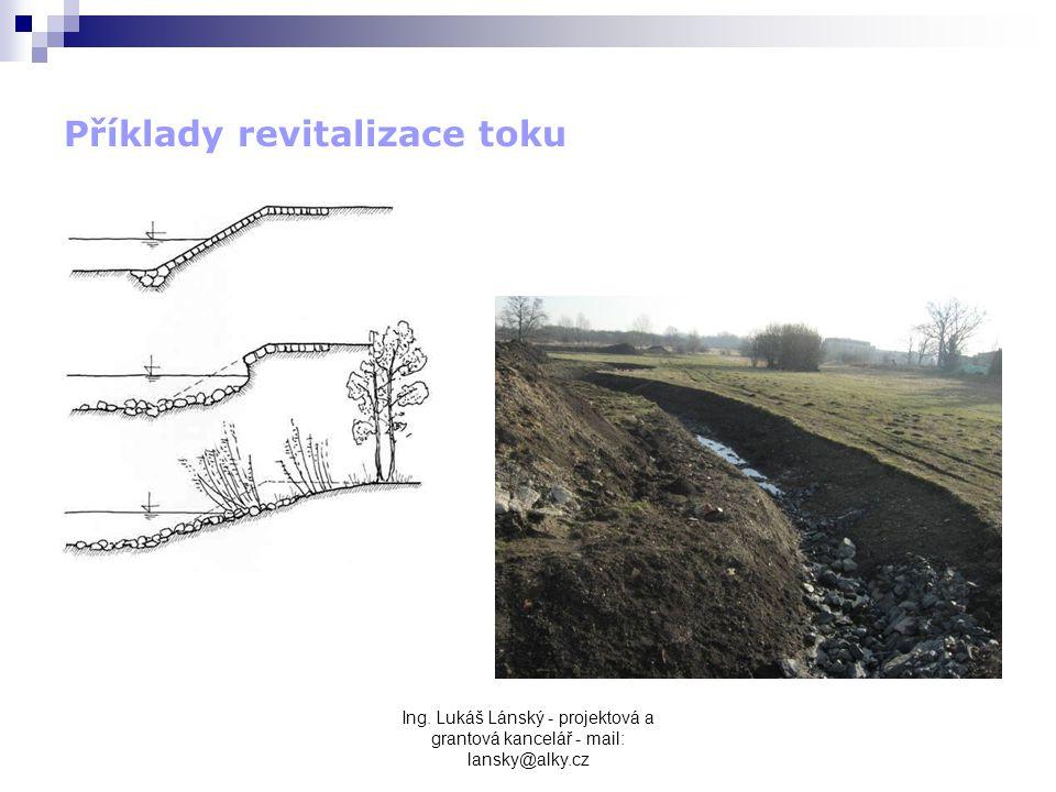Příklady revitalizace toku