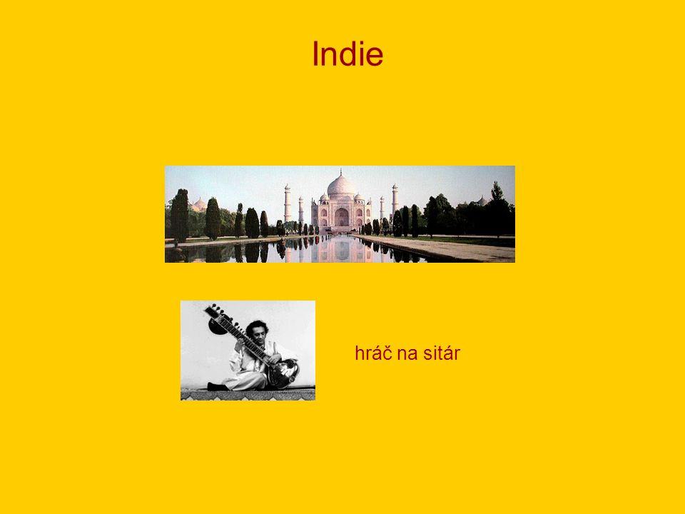 Indie hráč na sitár