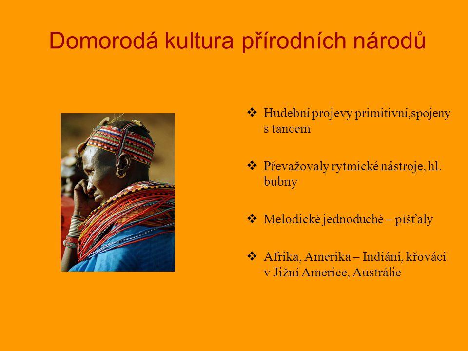 Domorodá kultura přírodních národů