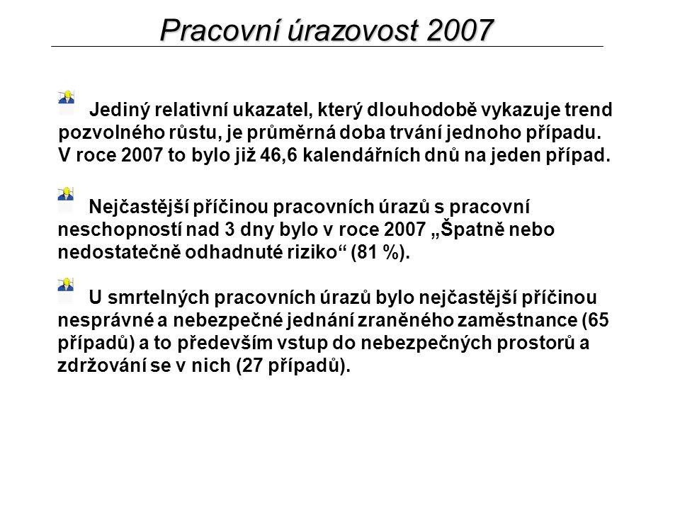Pracovní úrazovost 2007