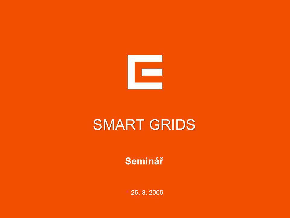 SMART GRIDS Seminář 25. 8. 2009