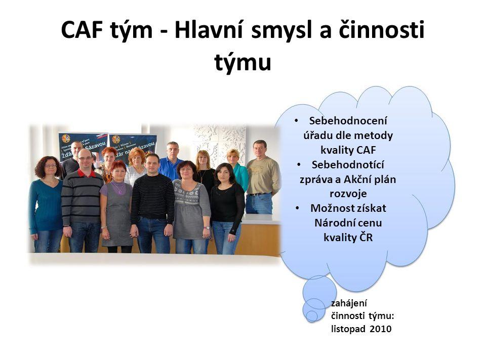 CAF tým - Hlavní smysl a činnosti týmu