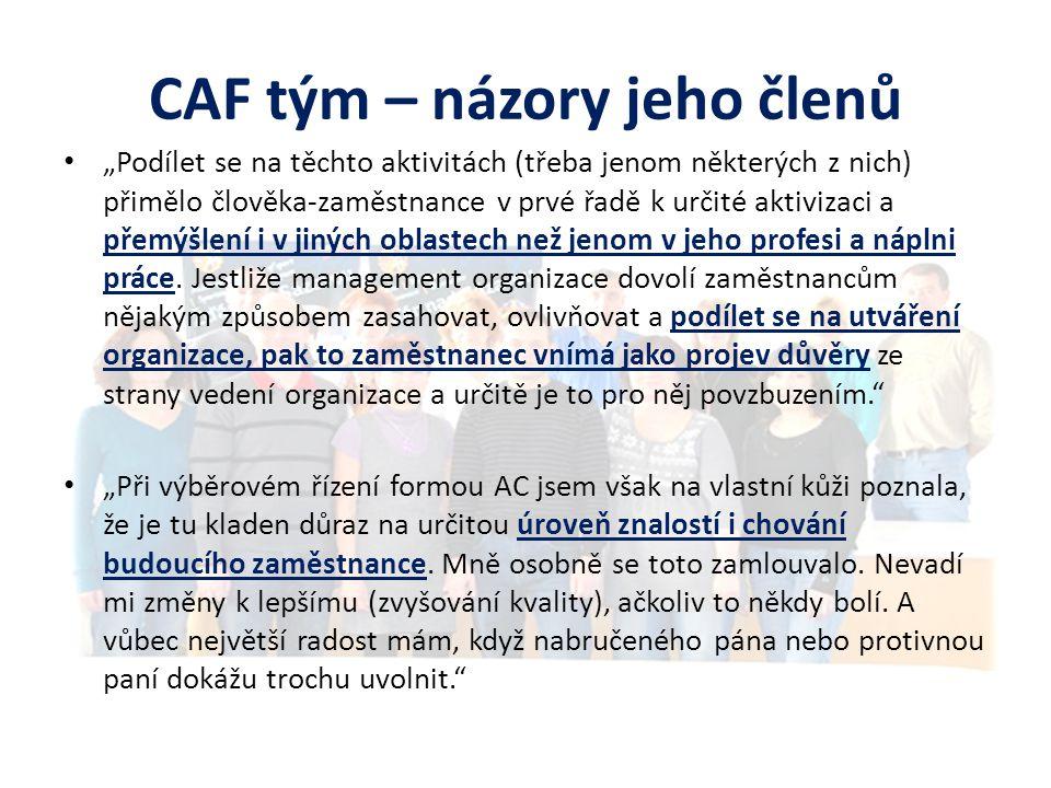 CAF tým – názory jeho členů