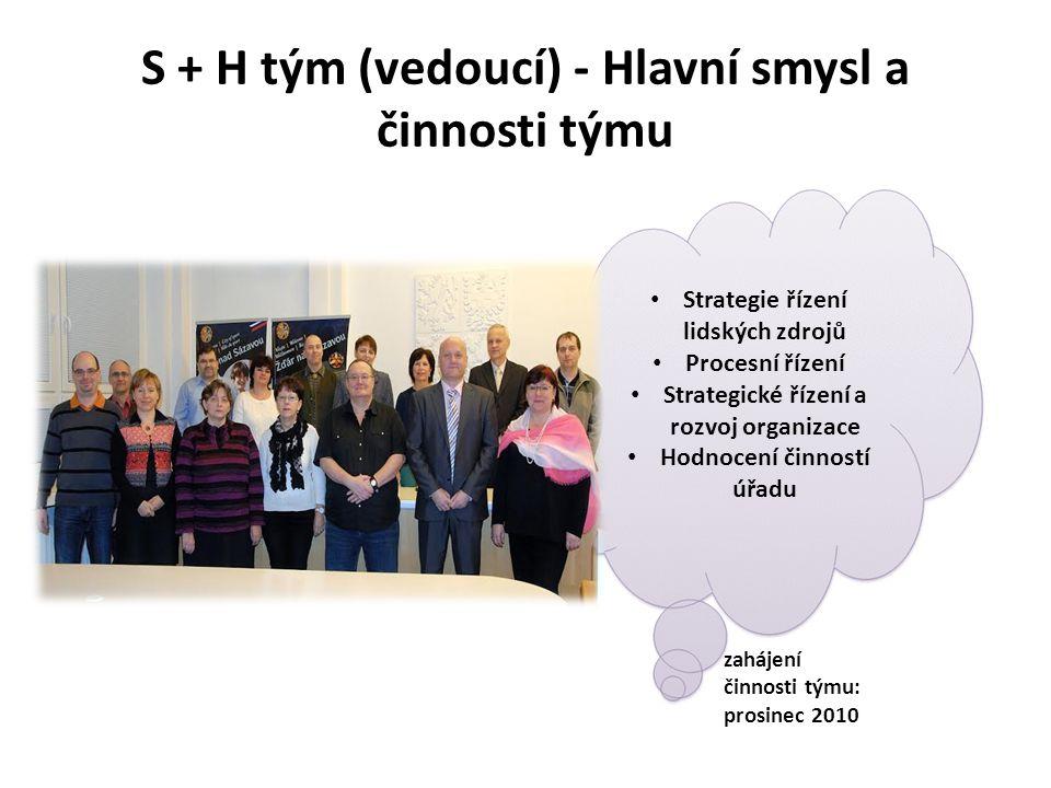S + H tým (vedoucí) - Hlavní smysl a činnosti týmu