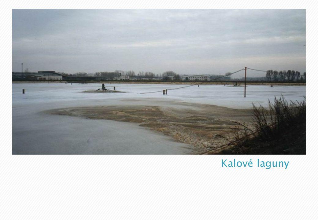 Kalové laguny