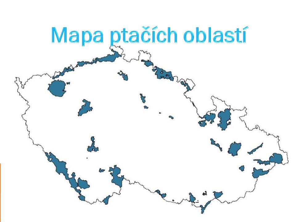Mapa ptačích oblastí