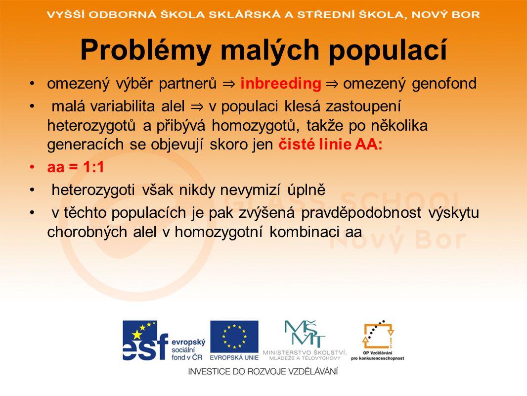 Problémy malých populací