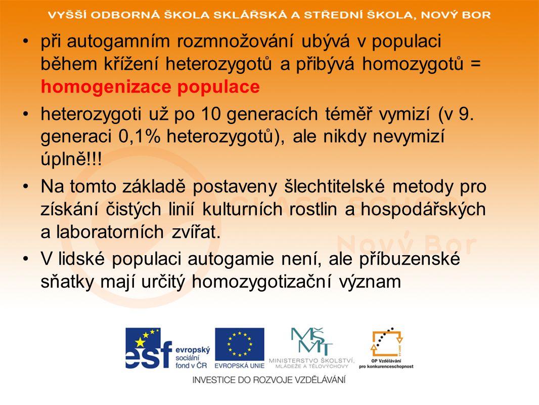 při autogamním rozmnožování ubývá v populaci během křížení heterozygotů a přibývá homozygotů = homogenizace populace