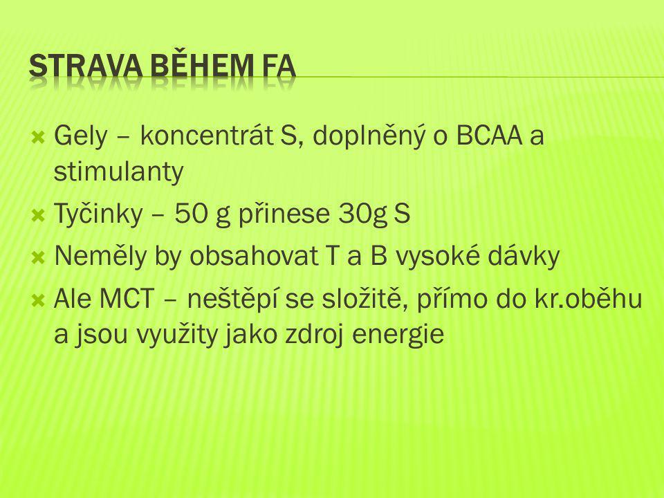 Strava během FA Gely – koncentrát S, doplněný o BCAA a stimulanty