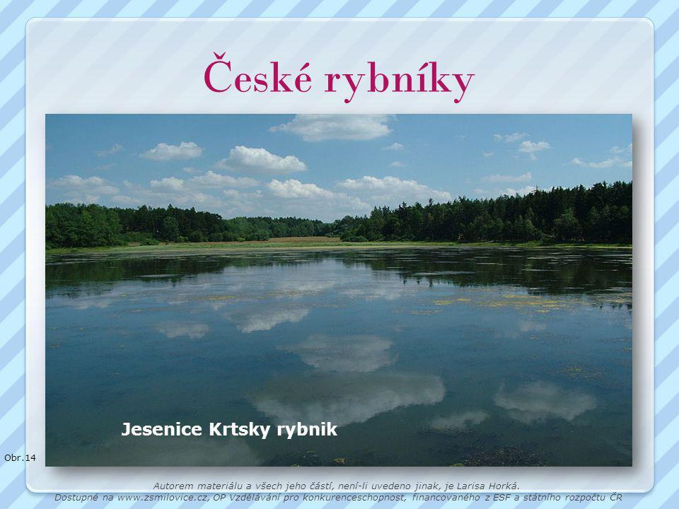 České rybníky Jesenice Krtsky rybnik Obr.14